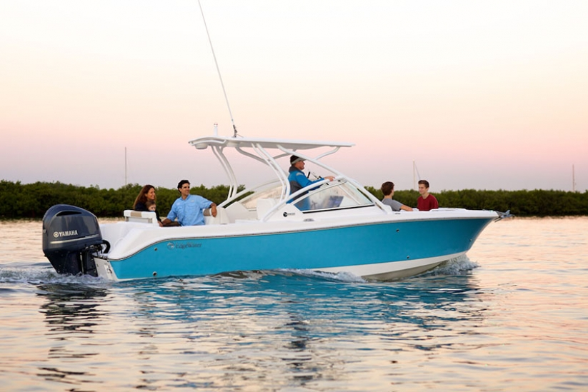 Edgewater Powerboats for sale - 248cx